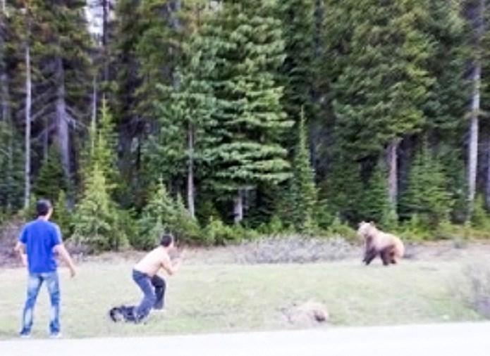 [Image: drunk-man-bear-2.jpg]